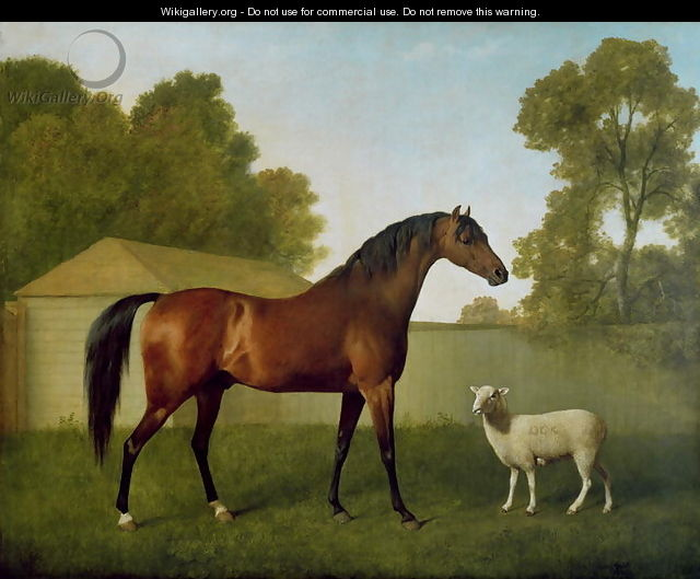 Dungannon, the property of Colonel OKelly, painted in a paddock with a sheep, 1793 - George Stubbs