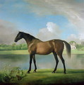 Viscount Bolingbrokes favourite hunter - George Stubbs