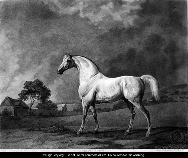 Mambrino, engraved by George Townley Stubbs 1756-1815 pub. 1794 - George Townley Stubbs