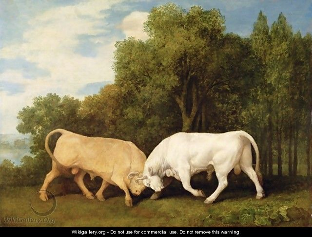 Bulls Fighting, 1786 - George Stubbs