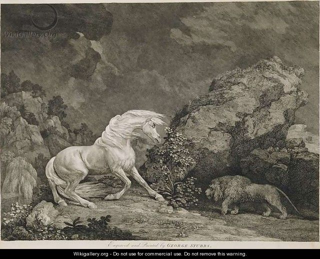 A Horse Affrighted by a Lion, engraved by the artist - George Stubbs