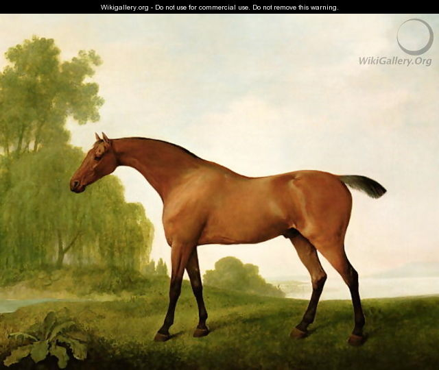 A Bay Thoroughbred in a Landscape, 1801 - George Stubbs
