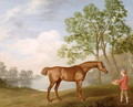 Pumpkin with a Stable-Lad, 1774 - George Stubbs