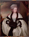 Mrs. Wilbraham Bootle, 1781 - George Romney