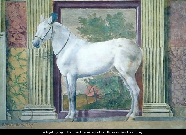 Sala dei Cavalli, detail showing a portrait of a grey horse from the stables of Ludovico Gonzaga III of Mantua, 1528 - Giulio Romano (Orbetto)