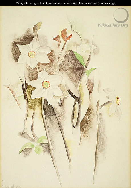 Narcissus - Charles Demuth