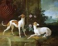 Misse and Turlu, two greyhounds of Louis XV - Jean-Baptiste Oudry