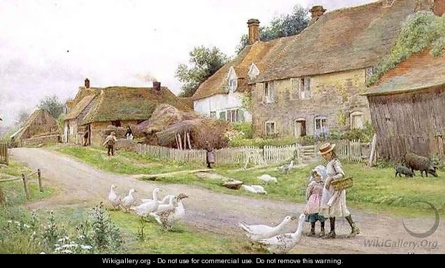 Country Cottages - John Pedder