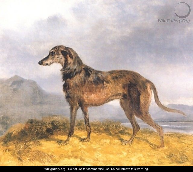 Scottish Deerhound - John Frederick Herring Snr