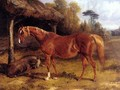Mare And Foal By A Shed - John Frederick Herring Snr