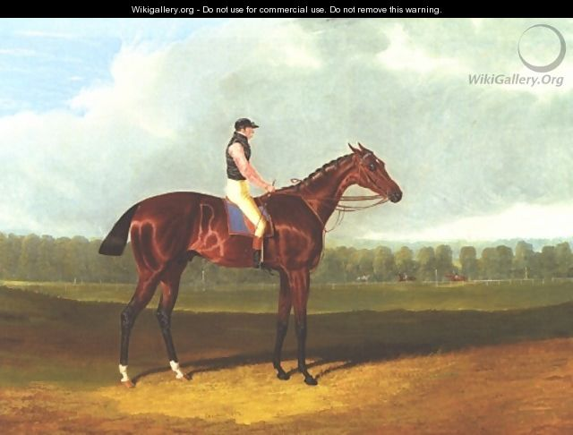 Theodore With Jockey Up - John Frederick Herring Snr