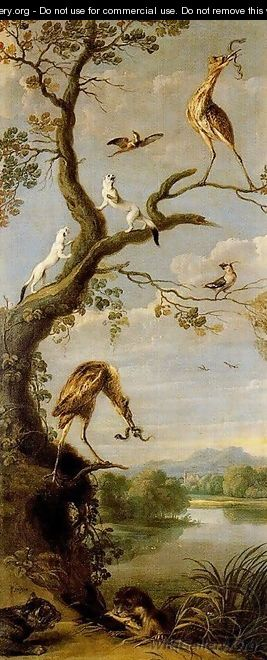 Waterbirds - Frans Snyders