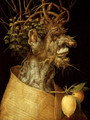 The Winter - Giuseppe Arcimboldo