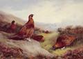 Autumn Glory - Archibald Thorburn