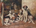 Hours of idleness, Hounds and a terrier in a kennel - John Emms