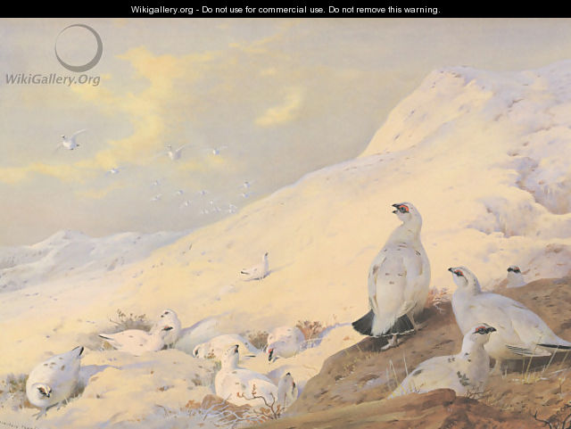 Sunrise - Archibald Thorburn