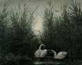 Swans in the reed with first morning-red - Caspar David Friedrich