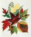 Autumn Leaves 1858 - Nina Moore