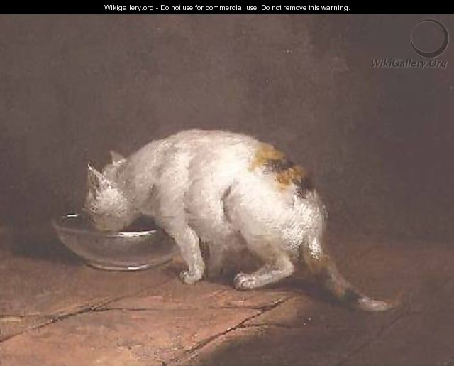 The Artists Cat Drinking - George Morland