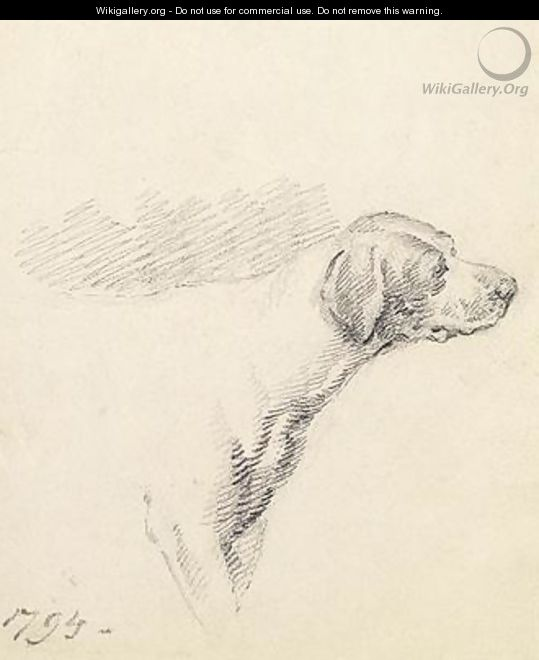 Study of a Hound 1794 - George Morland