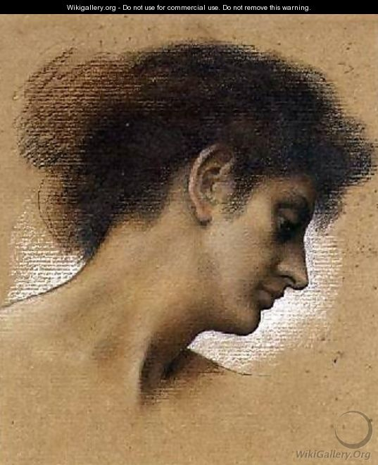 Study of a head 2 - Evelyn Pickering De Morgan