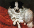 Sitting on cushions dog - Gustave Courbet