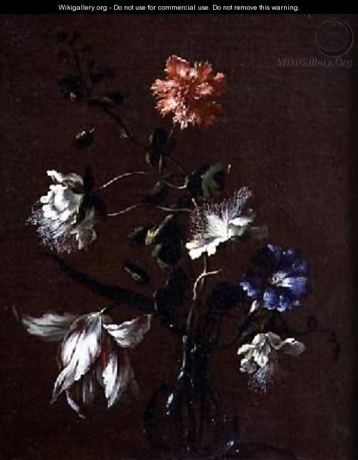 Still life of Caper Flowers Carnations Bindweed and Tulips - Gasparo Lopez