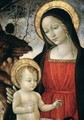 Madonna and Child 2 - Bartolomeo Montagna