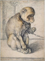 Monkey on a chain, seated - Hendrick Goltzius