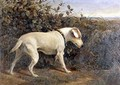 Terrier in a Landscape - William Elsob Marshall