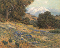 Old Baldy Mountain - Granville Redmond