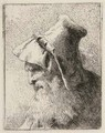 Profile of an old Man with a Beard, from Raccolta di Teste - Giovanni Domenico Tiepolo