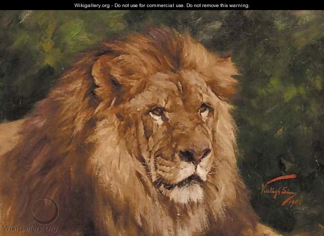 The head of a lion - Geza Vastagh