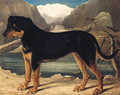 A Mountain Dog in an Alpine Landscape - German School
