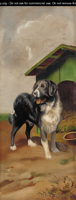 Toby, before a kennel - George Paice