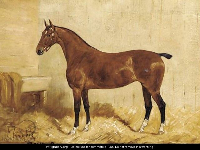 Flexible, a brown hunter in a stable - George Paice