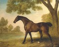 A bay hunter in a wooded river landscape - George Stubbs