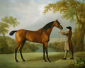 Tristram Shandy, a bay racehorse held by a groom, in an extensive landscape - George Stubbs