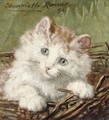 White kitten in a basket - Henriette Ronner-Knip