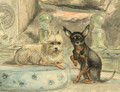 A smousje on a silk cushion and a black-and-tan fledermous-pincher at its side - Henriette Ronner-Knip