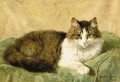A natural pose - Henriette Ronner-Knip
