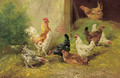 A cockerel and chickens in a farmyard - Henri Schouten