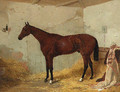 A Bay Racehorse in a Stable 2 - Harry Hall