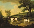 Two Pointers in a landscape - Francis Sartorius