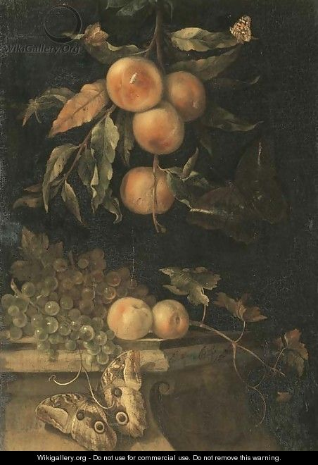 A still life with peaches and butterflies on a ledge - (after) Willem Van Aelst