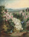 An extensive spring landscape with heather in bloom and butterflies - George Lucas