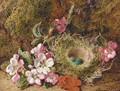 Primulas and a bird's nest with eggs on a mossy bank - George Clare