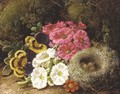 Primulas and a bird's nest on a mossy bank - George Clare