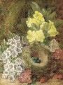 May blossom, primulas, berries, and a bird's nest with eggs, on a mossy bank - George Clare