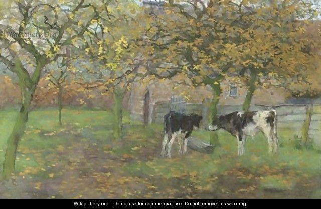 Calfs in the orchard - Geo Poggenbeek